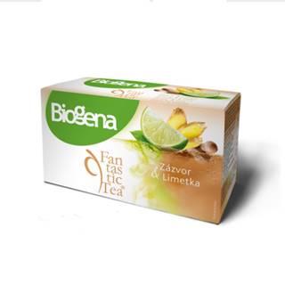 BIOGENA Fantastic tea zázvor & limetka 20 x 2 g