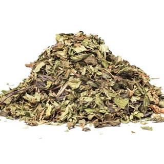 NANA MÄTA (Mentha spicata), 10g