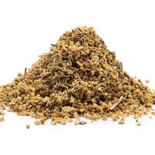 BAZA ČIERNA KVET (Sambucus nigra) - bylina, 10g