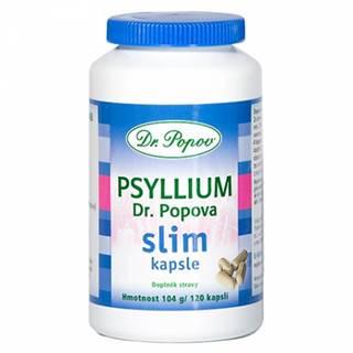 DR. POPOV PSYLLIUM SLIM cps 120