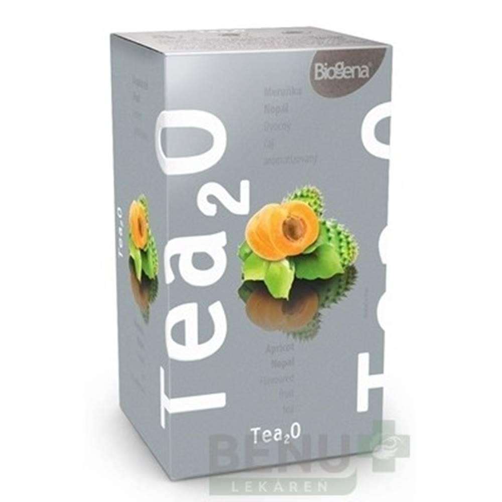 BIOGENA BIOGENA Tea2o marhuľa a nopál 20 x 2,5 g