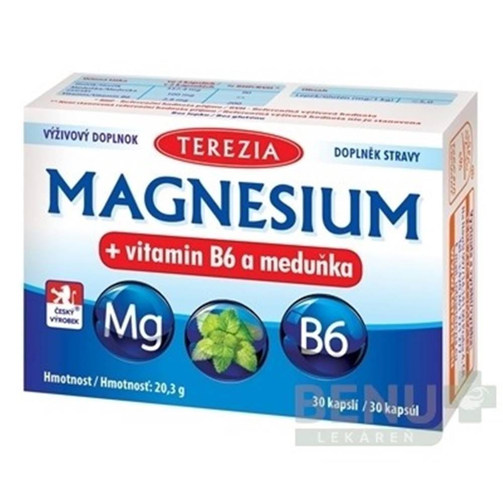 TEREZIA TEREZIA Magnezium + vitamín B6 a medovka 30 kapsúl